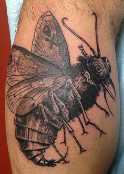 Small Wings Fat Body Butterfly Graphic tattoo by Three Kings Tattoo