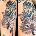 Eye of Providence Bird