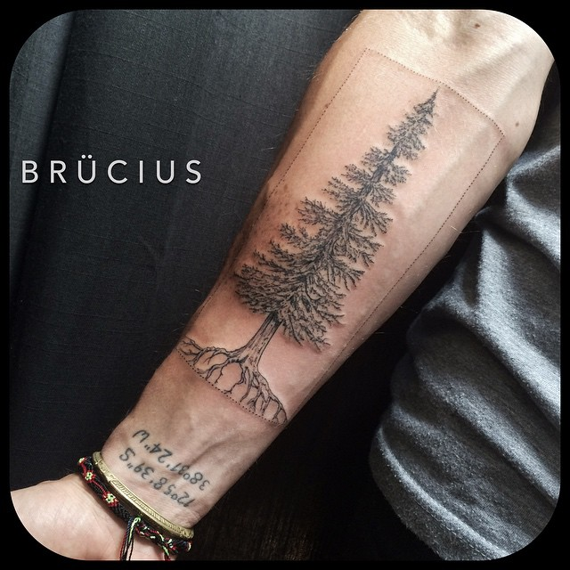 Arm Spruce Tattoo