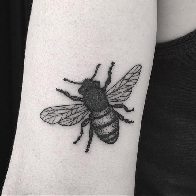 Fat Bee Dotwork Tattoo on Arm
