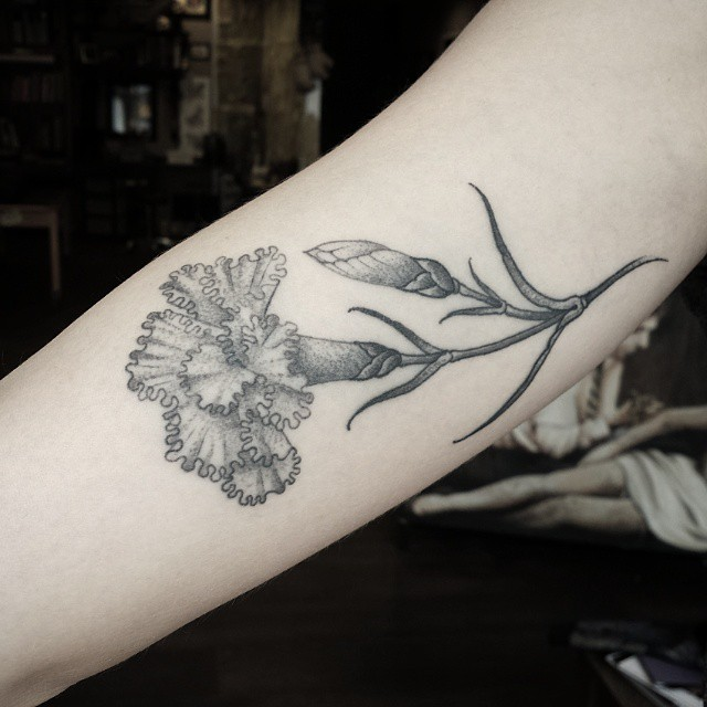 Flower Dianthus Tattoo
