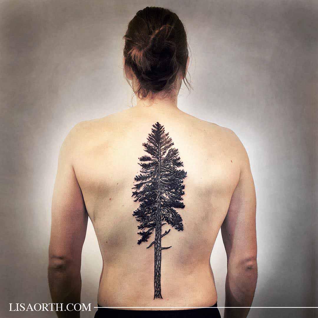 back tattoo pine tree