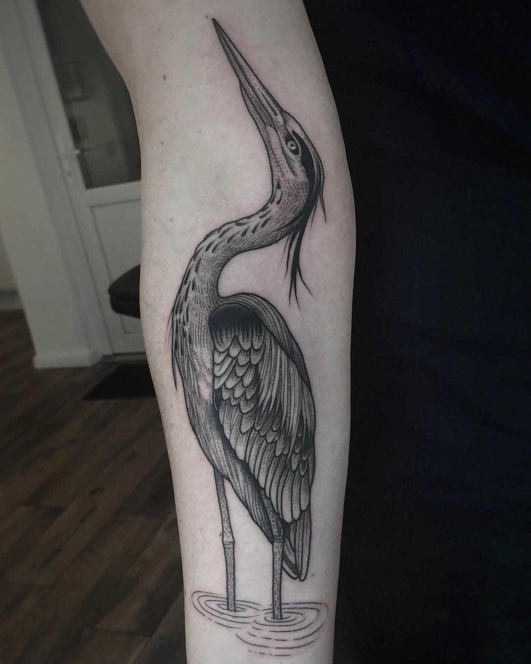 Tatto heron on arm