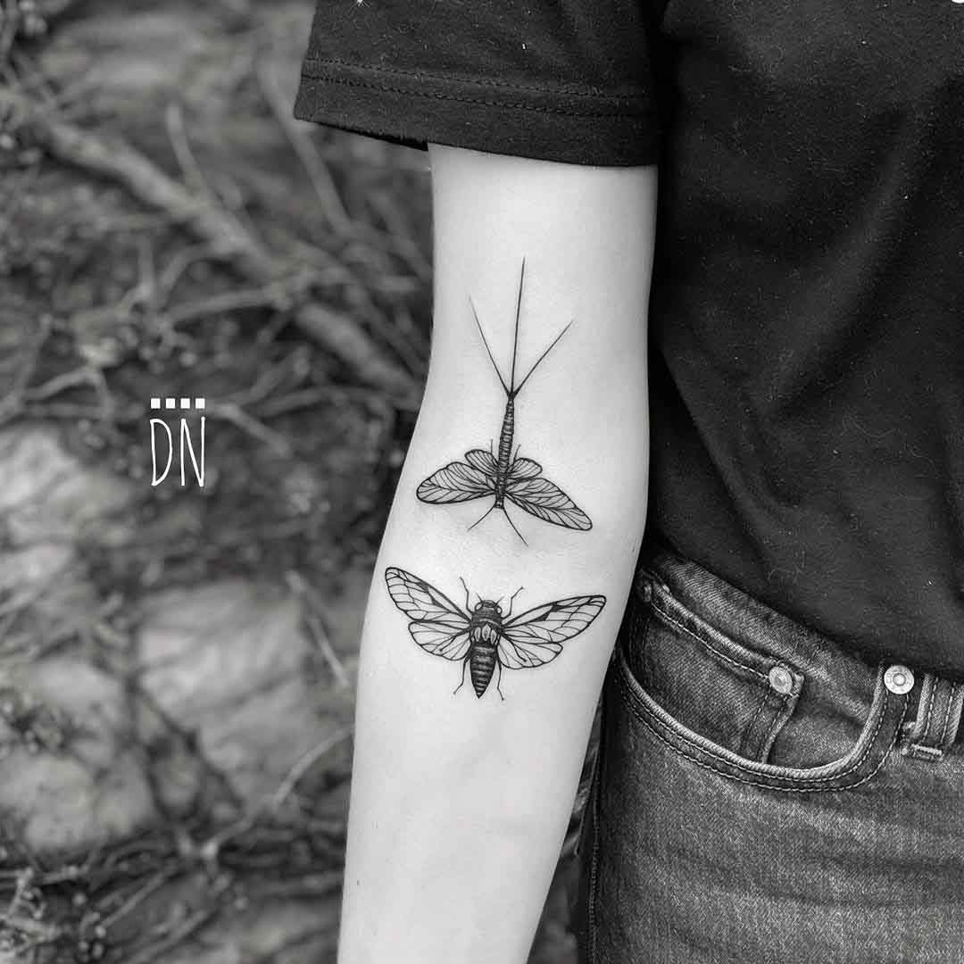 insects tattoo cicada and mayfly