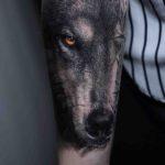 Realistic Wolf Arm Tattoo