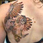 Owl Tattoo on Shoulder Blade