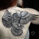 Grey Owl Tattoo on Shoulder Blade
