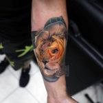 Lion Rose Tattoo
